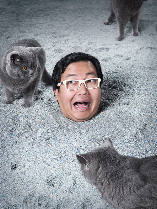 Internet celebrity and Cheezburger Network CEO Ben Huh buried in cat litter.  Photo by John Keatley.